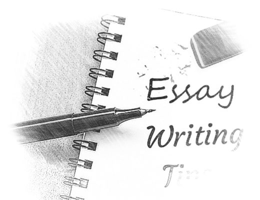 What Is The Purpose Of The Introduction In An Essay